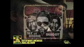 Money & Friends - Shaggy (Official Audio)