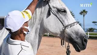 Clôture de la 4e édition du Meeting national des chevaux Barbes et Arabes-Barbes