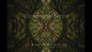 The Immortal Forest | Music for (Nature) Documentaries, Underscore, Ambient, Dream Music, Ethnic