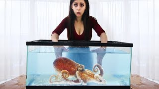 Whats in the Box Challenge - UNDERWATER AQUARIUM VERSION !