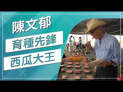 【草地狀元經典重現】育種先鋒西瓜大王 - YouTube
