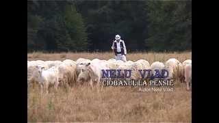 Azur Nelu Vlad Oficial -Ciobanul La Pensie