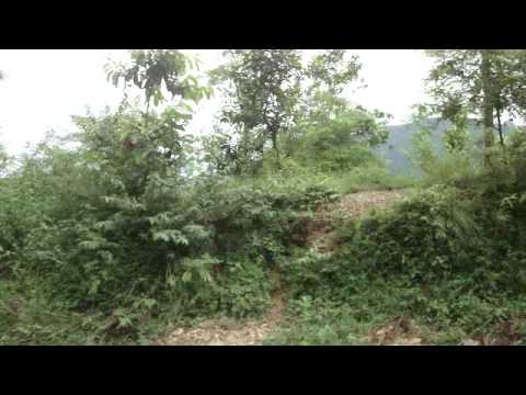 Pokhara Tansen Nepal 2 039