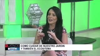 Osmani Navarro y los consejos para las plantas y el jardin