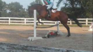 goodbye video for my horse