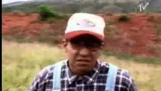 Nariz de doze - Clipe - Raimundos