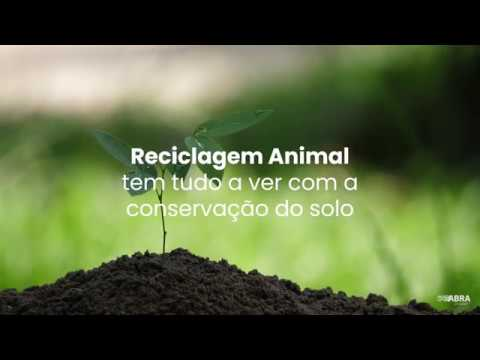 Preservação do Solo e a Reciclagem Animal