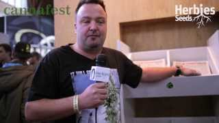 Royal Queen Seeds @ Cannafest 2013 Prague / Praha