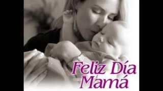 Te Amo Mamá...