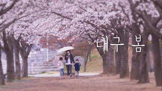 대구mbc 코로나 19 특집다큐멘터리 '대구 봄' 다시보기