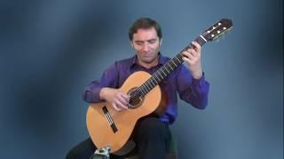 Eurovision Song Contest - Amar Pelos Dois - guitar arrangement- Viktor Vidović