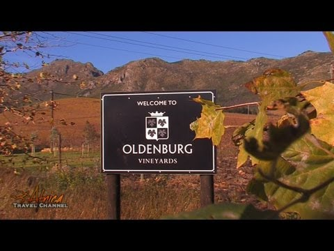Oldenburg Wines Stellenbosch South Africa – Africa Travel Channel