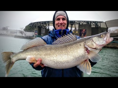 The Best Places to Fish in Michigan for Spring Success