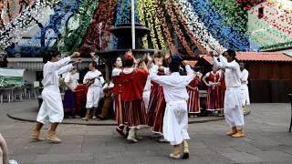Folklore in Funchal-Madeira