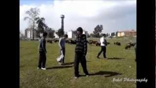 Koyunlu Harlem Shake #**#-#**#