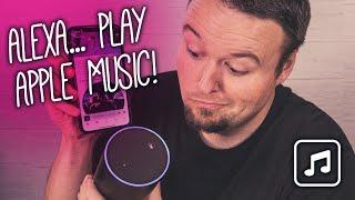 How to Setup Apple Music on Your Amazon Echo