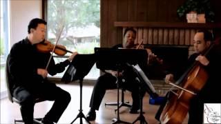 La Rejouissance (Handel) String Trio Cover by The Ocdamia Strings | Wedding Bridal Entrance Song