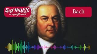 Toccata in D Minor - Johann Sebastian Bach [Best MUSIC no copyright sounds]