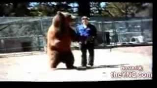 Urso ataca homem cenas fortes !