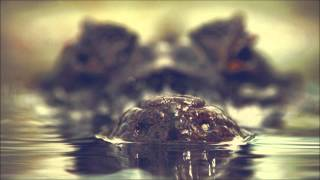 Mefjus & Bowsar - Primal Instinct (ft. Maksim)