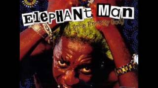 Elephant Man Feat. Ce'Cile - Bad Gal, Bad Man