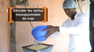 Togo : Dévoiler les vertus insoupçonnées du soja