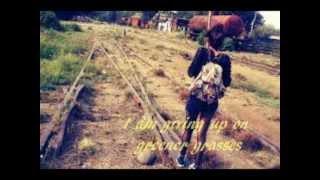 Giving Up By Ingrid Michaelson- Lyrics