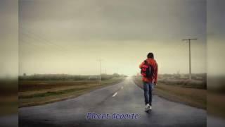 Ion Guritanu - Plecat departe