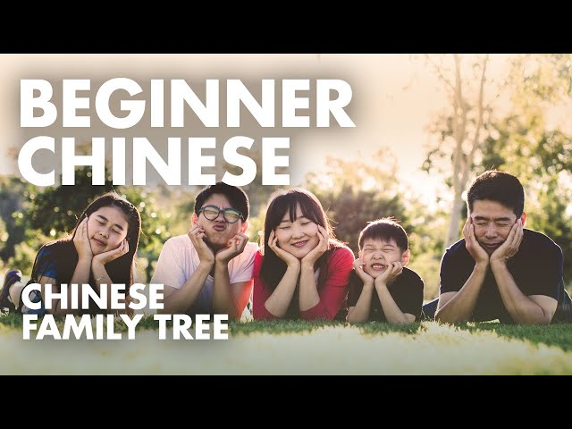 Learn Chinese Conversation for Beginners | Language Practice to Study with English Subtitles A6