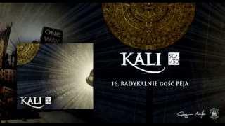 16. Kali ft. Peja - Radykalnie (prod. MTI)