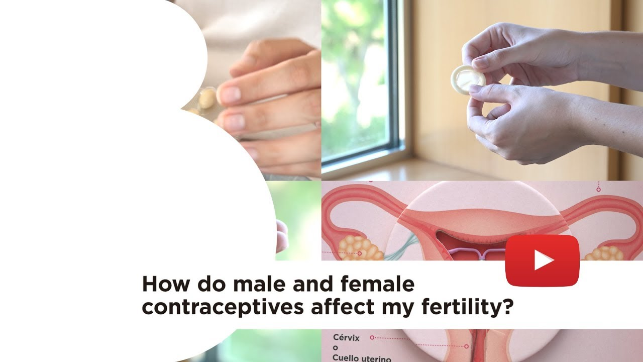 How do male and female contraceptives affect my fertility?
