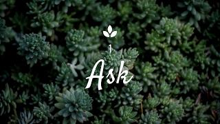 [Ask] Kdo je Ajťák ? [Ep.1]