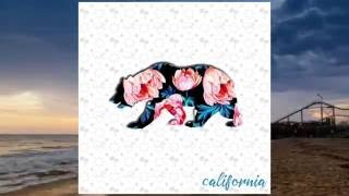 Silent Pilot - California (Single)