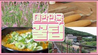 [대한민국 꿀팁] 2020년 9월 1일 다시보기
