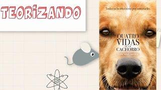 Quatro Vidas de um Cachorro - Teorizando