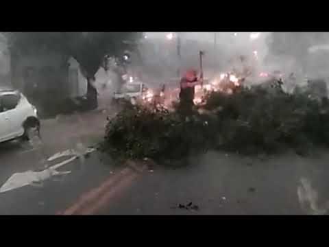 A cidade de Toledo sofre com chuvas e ventos nesta quinta-feira. 31 - Cidade Portal