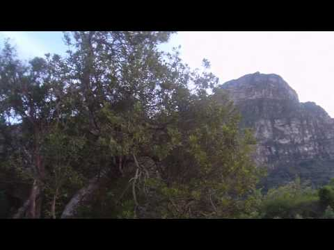 Josh/EJ – Table Mountain in Cape Town, South Africa Hike #2