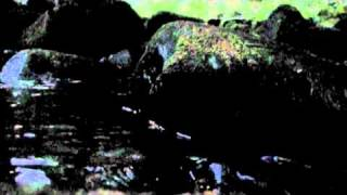 Flowing Evening Mountain Stream Relaxing Nature Sounds and Zen Meditation - Live Unedited (no music)