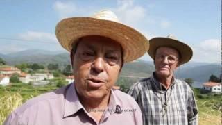 Alto do Minho (2012) [trailer] (english subtitles)