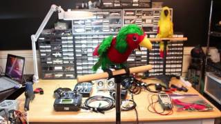 Pen Pineapple Apple Pen Robot Parrot
