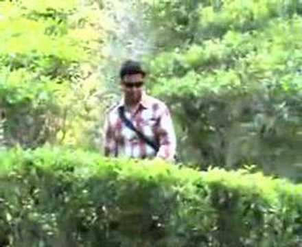 Gazipur Tea Garden