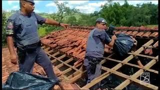 Polícia Militar encontra drogas  em sítio do traficante  mais procurado do Estado