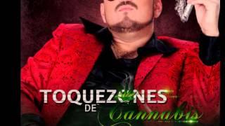 Tokezones De Cannabis (TOQUEZONES DE CANNABIS) (Epicenter) - El Komander