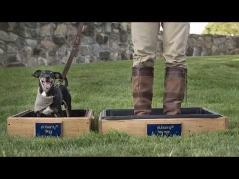 Behind the Scenes: Jim Dratfield for Dubarry Dog Photoshoot