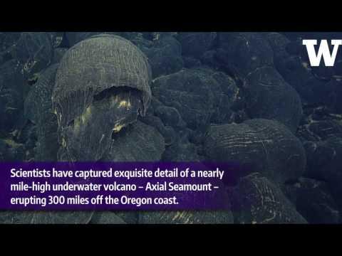 Underwater volcano's eruption captured in exquisite detail by seafloor observatory