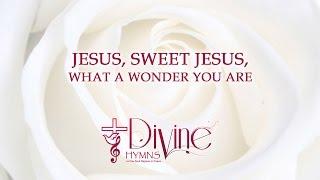 Jesus, Sweet Jesus, What a wonder you are - Divine Hymns - Lyrics Video