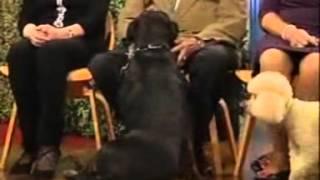 Manfred Komac bei der Barbara Karlich Show