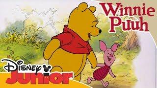Freundschaftsgeschichten mit Winnie Puuh: Beste Freunde   Disney Junior