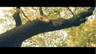 RGT - Better Dayz (Music Video)