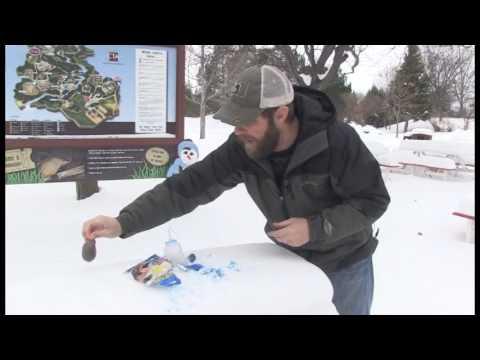 Simple snow orb craft